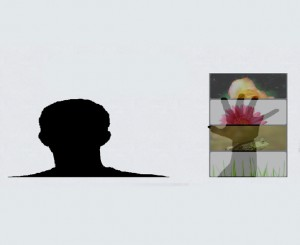 motion gallery widget